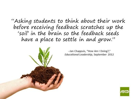 EDUCATION – Feedback, Feedback then Feedback